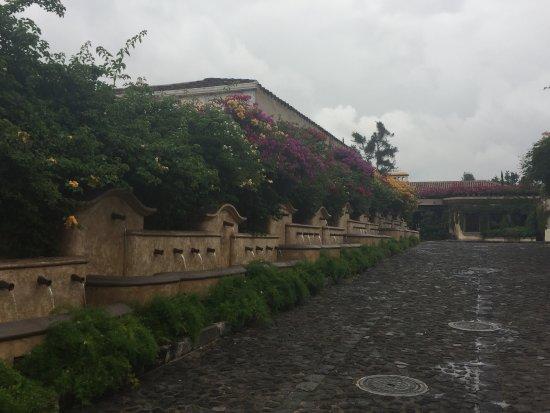 Camino Real Antigua: Entrada llena de flores