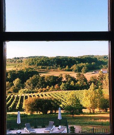 Sainte-Radegonde, France : view of the vineyards
