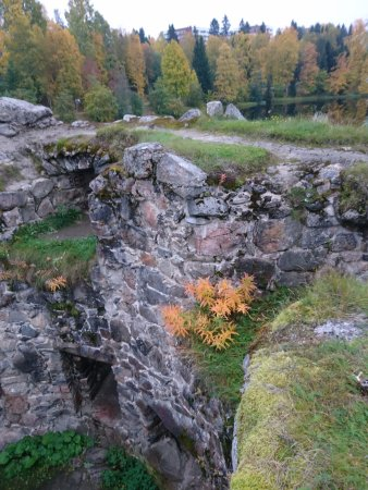 Kajaani castle ruins on the top