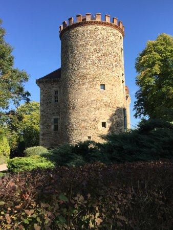 vue sur une tour du château