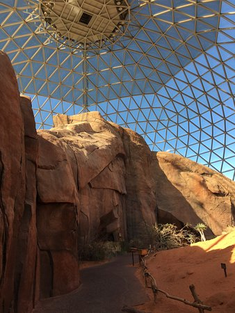 Henry Doorly Zoo Omaha Ne Top Tips Before You Go With
