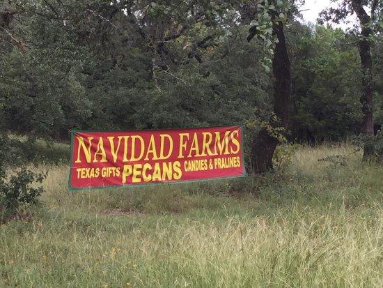 Navidad Farms