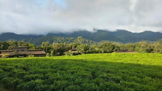 Gafunzo, Rwanda: one of the most breathtaking views