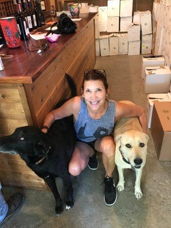 Laura Michael Wines - Zahtila Vineyards: Laura Michael's wine doggies!