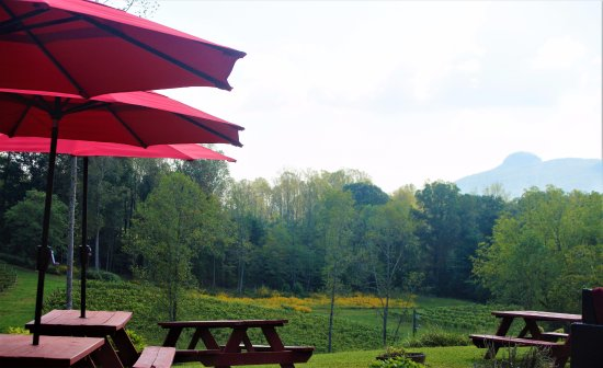 Pilot Mountain, Kuzey Carolina: a place to sip your wine with a view