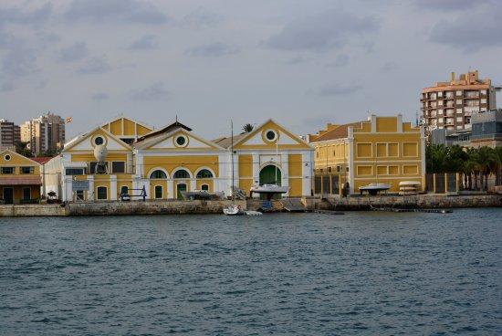 Barco Turístico: The Tourist Boat