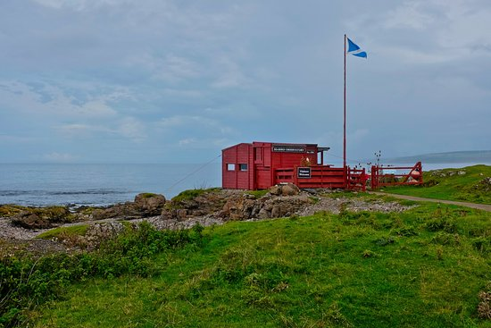 Machrihanish, UK: This wee hut is it.