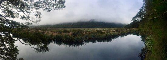 Fiordland National Park, New Zealand: photo1.jpg