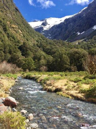 Fiordland National Park (Te Wahipounamu): photo3.jpg