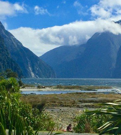 Fiordland National Park (Te Wahipounamu): photo8.jpg