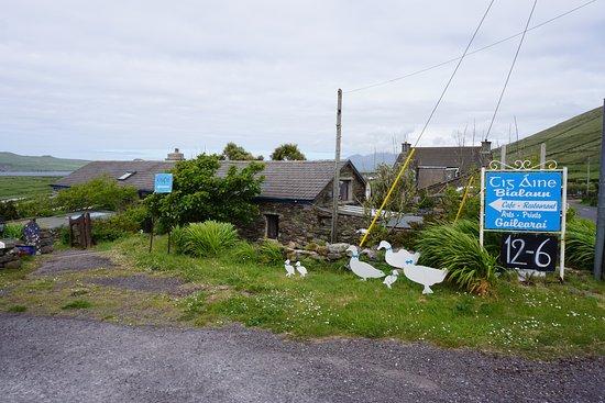 Ballyferriter, Irlanda: view from the road