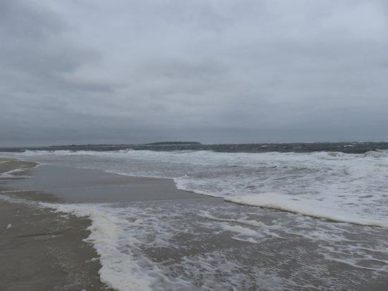 Crane Beach Picture