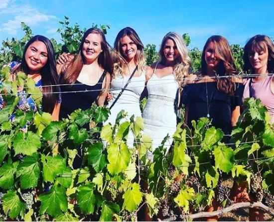 Kelowna Wine Tours Tripadvisor