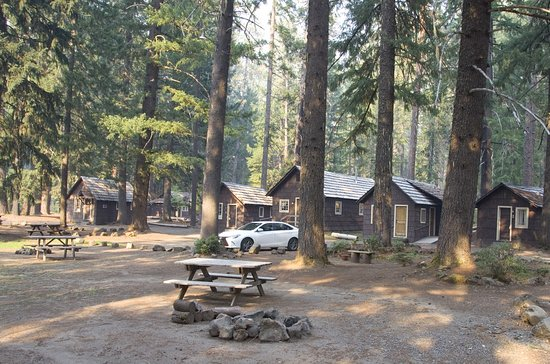 Prospect, Όρεγκον: The cabins at Union Creek Resort are tucked in among the tall timber, with lots of picnic tables