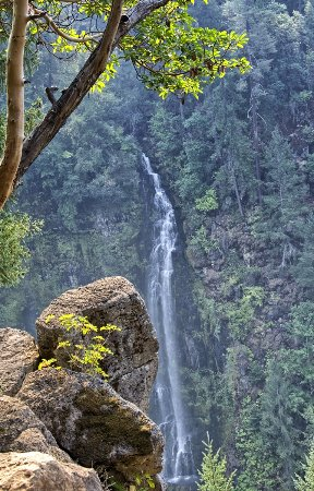 Prospect, OR: After visiting Mill Creek Falls you can find beautiful Barr Creek Falls just a short walk away.