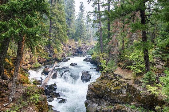 Prospect, OR: The amazingly scenic Gorge Natural Bridge is only a mile from Union Creek Resort.