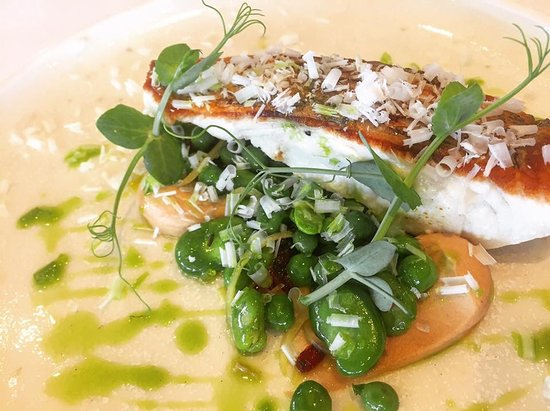 Whale Beach, Australia: Fish of the Day: Crispy skin snapper, broad beans, green peas, preserved lemon, macadamia.