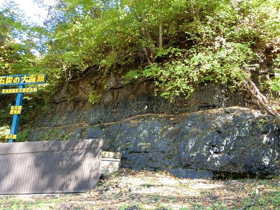 Coal Outcrop