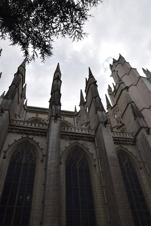 Cathédrale de Saint-Pierre et Saint-Paul : A viiew of the side of the cathedral.. just lovely spires!