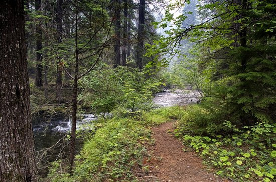 Prospect, Oregón: The Union Creek trail is an easy walk along the scenic waterway.