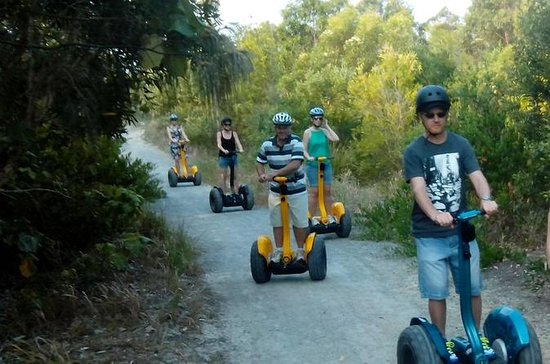 Gold Coast Segway Safari Adventure...