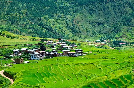 Bhutan Walking Holidays - Beyond the...