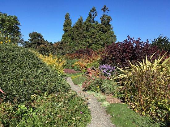 Picture of mendocino coast botanical gardens - Mendocino coast botanical gardens ...