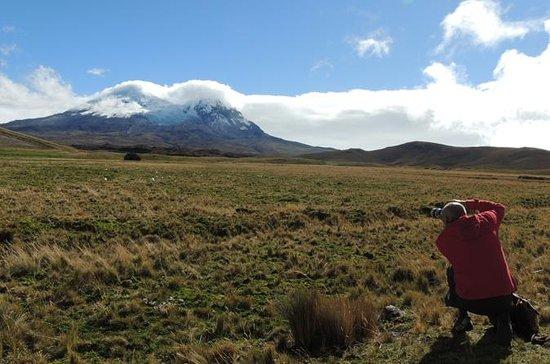 Antisana火山とコンドルを見ながらプライベートツアー