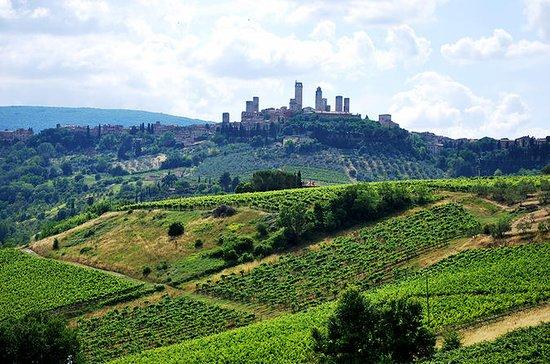 San Gimignano e Chianti Classico Wine
