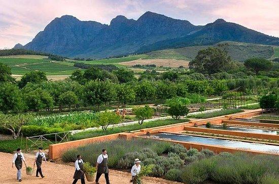 Jardins privés Glorious et Wine Tour...