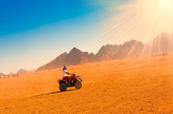 3-HOUR MORNING QUAD SAFARI - AL AHYAA