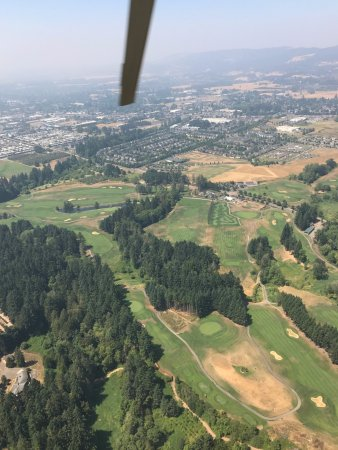 Dundee, OR: The view overlooking the spot we also played golf...Golf and Wine, it doesn't get any better!