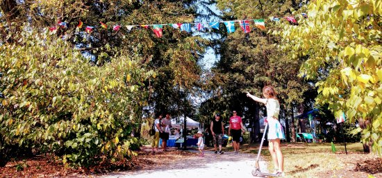 Morton Arboretum: IMG_20170923_113030331~2_large.jpg