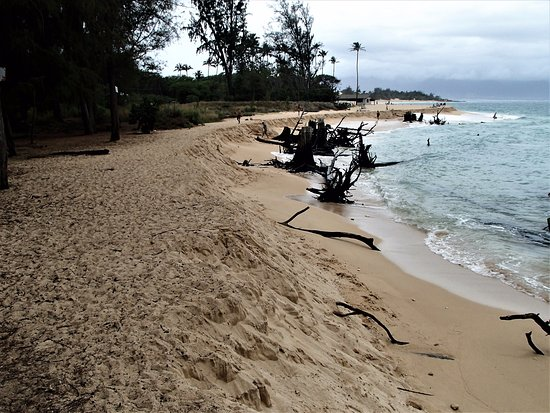 Paia, Hawái: BALDWIN COVE