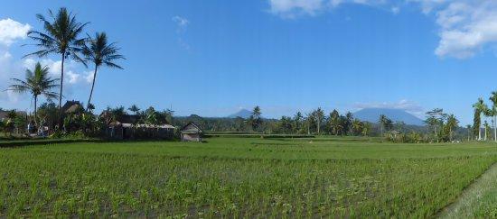 Agus Bali: View to the mountains