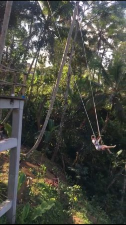 Tegalalang, Indonesia: You can push your adrenalin by swinging your body while enjoying nice green view
