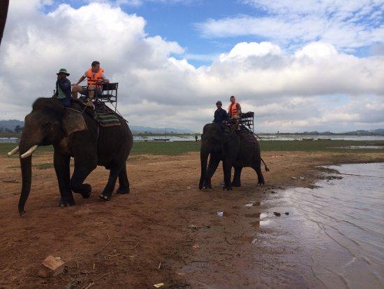 Dak Lak Province, Vietnam: Elephant riding