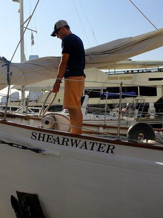 Manhattan by Sail - Shearwater Classic Schooner : Shearwater Schoner
