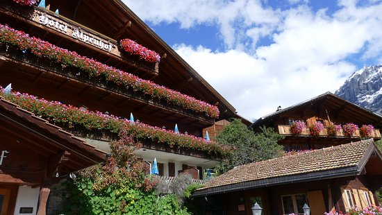 Hotel Alpenhof Grindelwald : Hotel viewed from the car park