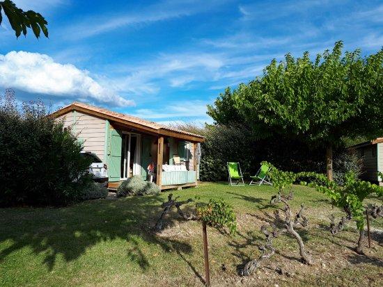 Mirabel-aux-Baronnies, France : Un des 15 gites au milieu des vignes