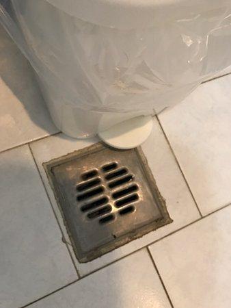 Iliessa Beach Hotel: Brunnen vid toaletten där allt avloppsvatten for upp när man släppte ut vatten från badkaret.
