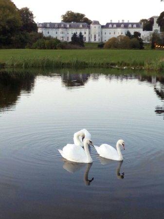 Straffan, Irlandia: The K Club