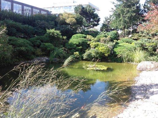 Rilassante photo de jardin japonais le havre - Jardin japonais le havre ...