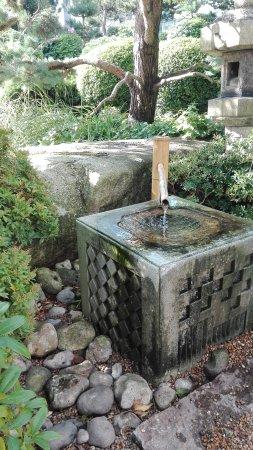 Jardin japonais le havre frankrijk beoordelingen for Entretien jardin le havre