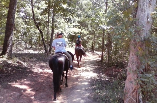 "Five Oaks Riding Stables: ""Beautiful Riding Scenery!"""