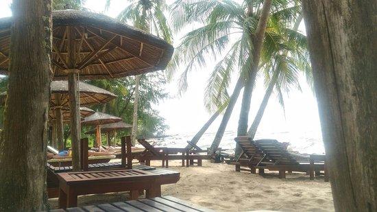 Coco Palm Beach Resort & Spa : P_20170928_152227_BF_p_large.jpg