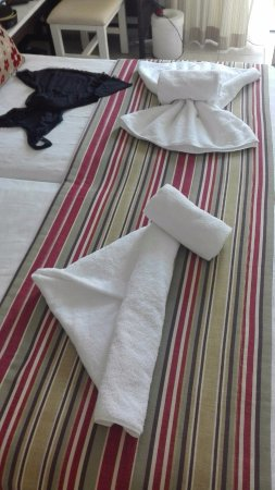 Albatros Spa & Resort Hotel: Hobby sympatycznej Pani sprzątającej pokój