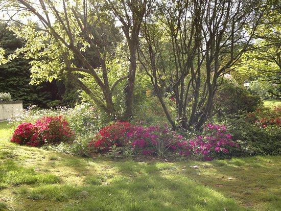 Trelaske Hotel & Restaurant: Lovely Gardens
