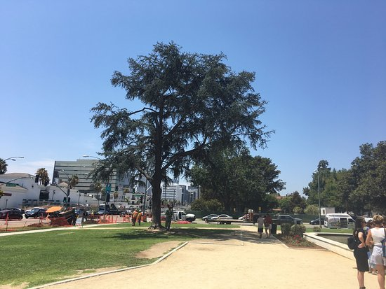 Beverly Hills, CA: Path way at the park