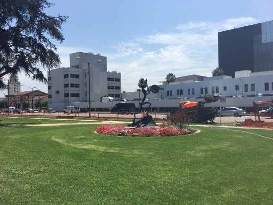 Beverly Hills, CA: Lawn